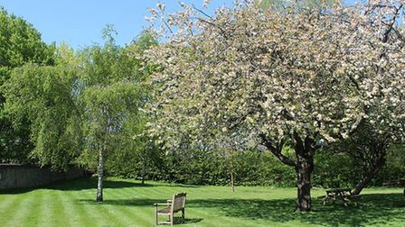Gardeners in St Albans district could be fined if they inadvertently alter protected trees, and are