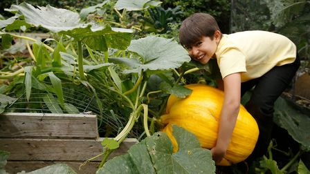 The RHS is keen to get children growing fruit and vegetables during lockdown. Picture: Luke MacGrego