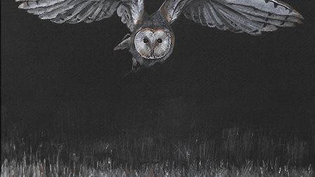 Jo Brown's picture 'Flight' for the Royston Arts Society's online exhibition. Picture: Jo Brown