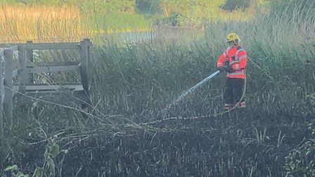 Firefighters tackled a blaze in the reeds beds at the Pocket Park Nature Reserve.