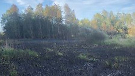 Firefighters were called to the Pocket Park Nature Reserve on Friday evening.