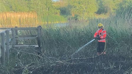 St Neots Pocket Park fire caused 'significant damage to an important wildlife habitat'. Picture: CAM
