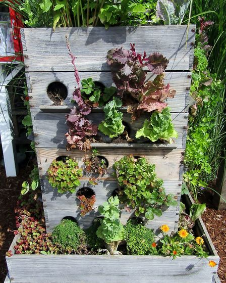 Old drawers can be converted into plant containers. Picture: iStock/PA