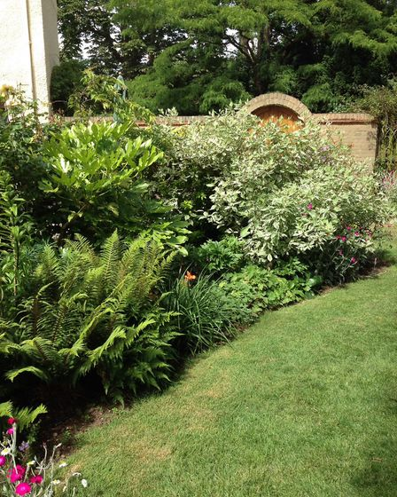 Two gardens in Staploe will be the first in Cambridgeshire to reopen. Picture: NGS