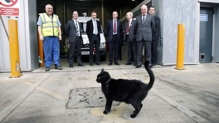 Sweep the HDC cat was part of the team at Huntingdon depot.