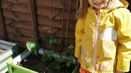 Bethany, age seven, with her beans for the Sustainable St Albans lockdown competition. Picture: Sup