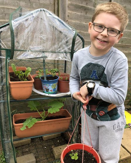David, age 9, with his vegetables for the Sustainable St Albans lockdown competition. Picture: Suppl