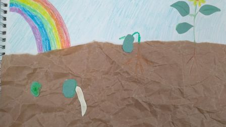 Johanna, age 15, made a drawing for the Sustainable St Albans lockdown competition. Picture: Supplie