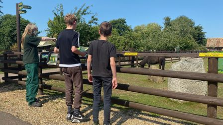 Shepreth Wilidlife Park visitors on Tuesday. Picture: Rebecca Willers