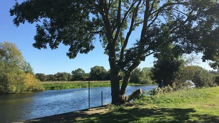 The Great Ouse Valley Trust has launched a tree planting project