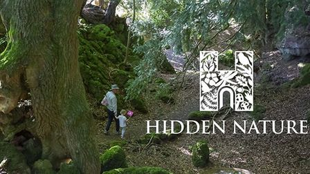 This year's Heritage Open Days theme is #HiddenNature, so photos capturing this theme are especially