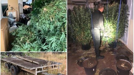 Cannabis factories found in Huntingdonshire village after police rescue horse. Picture: CAMBS POLICE