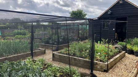 Four-acre Mediterranean style garden open to the public in Kimbolton. Picture: NGS