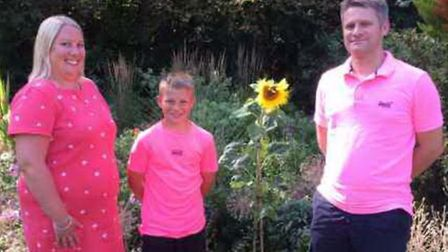 Sunflower planted in memory of a nine-year-old boy from Huntingdon by The Duchess of Cambridge had a