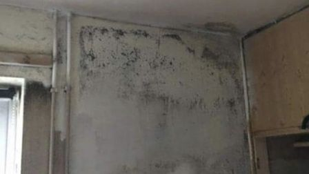 Damp and mould in Hightown Housing Association flat in Charrington Place. Picture: Supplied