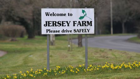 Jersey Farm was established as a residential area in the late 1970s. Picture: Danny Loo