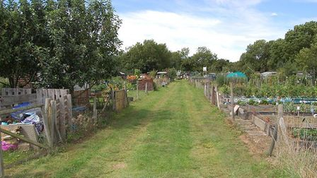 Allotment holder Andrew Hose says a burst pipe flooded his plot with sewage, ruining the crops he ha