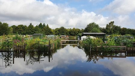 Work of plot owners at the Burydell Lane allotments in St Albans has been destroyed by flooding, Pic