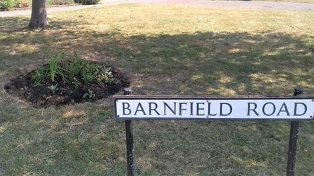 Shrubs were planted, replacing grass verges in Barnfield Road. Picture: Marshalswick North Residents