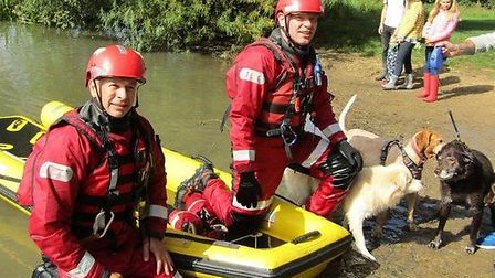 The pooch, a Labrador named Ben, was brought to safety by firefighters on Bank Holiday Monday. Pictu