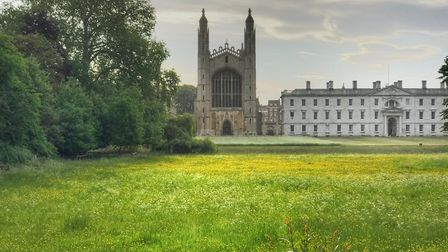 Kings Meadow in Cambridge. Picture: supplied by Cambridge Open