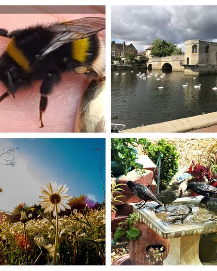 Some more beautiful images taken by Hunts Post readers.