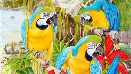 Tina Bone's painting 'Blue and Gold Macaws and Swamp Hibiscus' for the Royston Arts Society's autumn