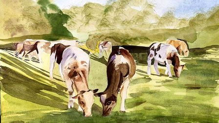 Meiru Ludlow's painting 'Cows on Cambridge Common' for the Royston Arts Society's autumn exhibition.