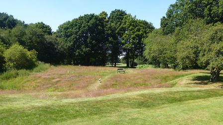 Circus Berlin was due to pitch up on Harpenden Common. Picture: Harpenden Town Council