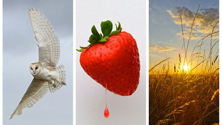 Here are the winners of our Hunts Post Photographic Competition for summer.