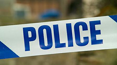 Police are appealing for witnesses after a fight broke out in Stevenage during the early hours of Sa