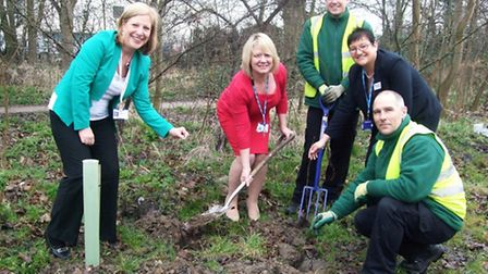 Staff planted trees to help create more green space on the premises