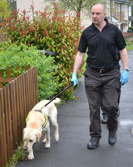 A police sniffer dog was used to aid the operation