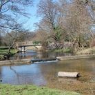 The River Mimram as it should be near Whitwell