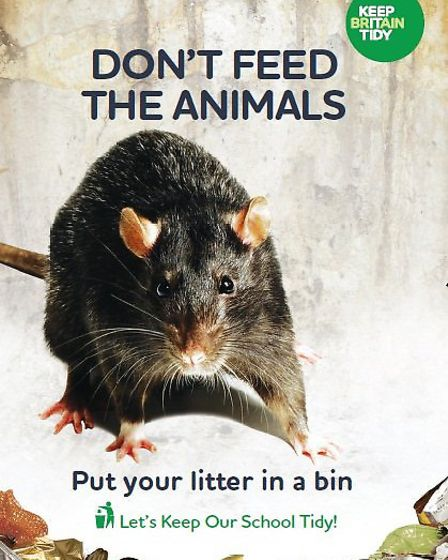 Anti-litter campaign - RAT