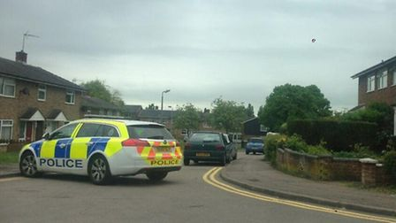 Armed police were called to a domestic incident at Darwin Road