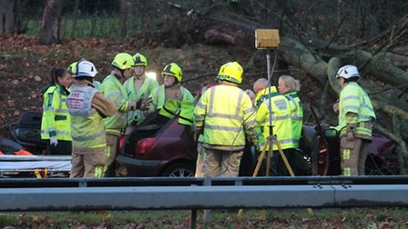 A man was trapped in his car after a tree fell onto his vehicle