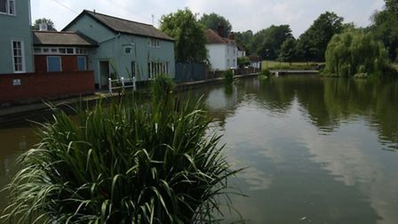 Doctors Pond at Great Dunmow