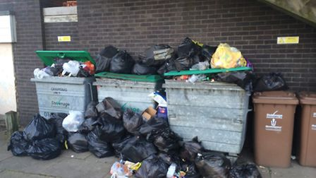 Rubbish is overflowing at The Oval in Stevenage