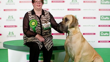 Inez Cooke from Stotfold with her Great Dane Isis who won the best of breed winner on the first day