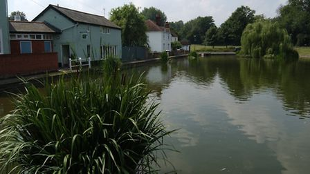 The Doctors Pond in Great Dunmow.
