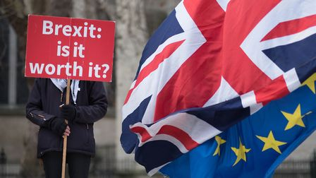 Anti Brexit demonstrators outside the Houses of Parliament in London. Photograph: Stefan Rousseau/PA