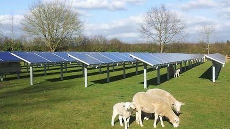 An example of what the solar farm could look like