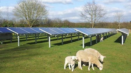 An example of what the solar farms could look like