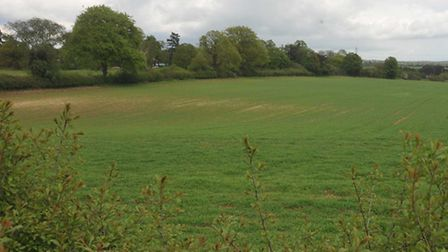 Pictured is the land which is home to Hitchin FC
