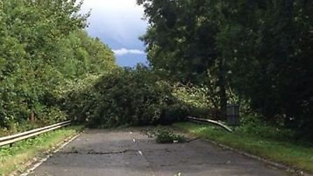The A507 has been closed between Clophill and Shefford due to fallen trees blocking the road. Credit