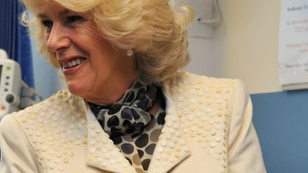 Villagers have appealed to the Duchess of Cornwall for help about plans for a Knebworth solar farm