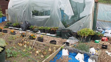 Damaged allotments by travellers in Letchworth near to Blackhorse Road