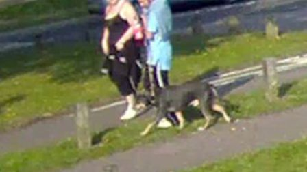 Police want to speak to this couple in connection with the theft