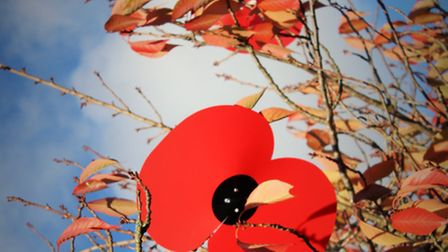 A two-minute silence will be held at 11am to remember the fallen. Credit: Gary Sanderson.